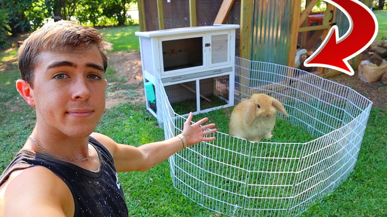 Building NEW Modern Bunny Mansion!!!