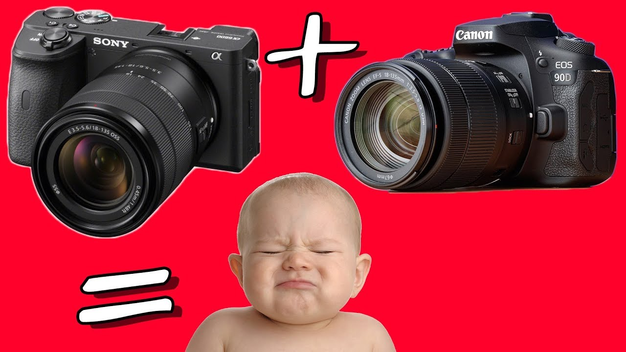 Mediocre Flagship Sony A6600 vs Crippled Canon 90D: The Gap Has Closed