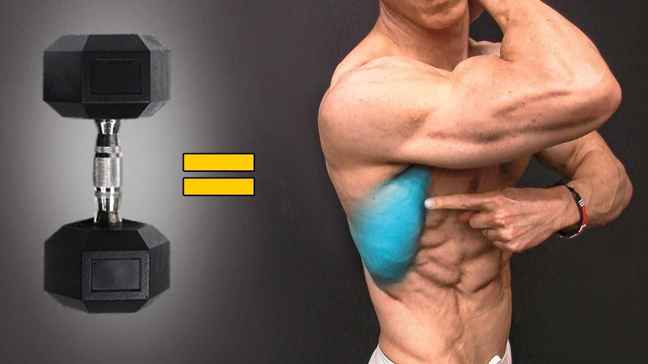 The BEST Dumbbell Exercises - BACK EDITION!
