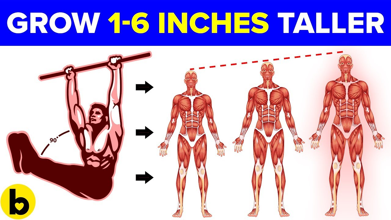 Want to Grow Taller? Try These Exercises